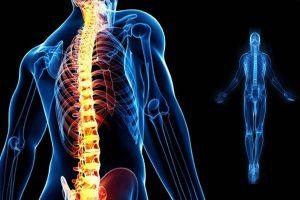 riallineamento-colonna-vertebrale