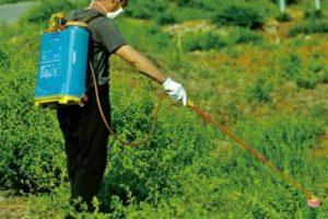 pesticidi_greenpeace
