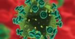 HIV-virus-WEB
