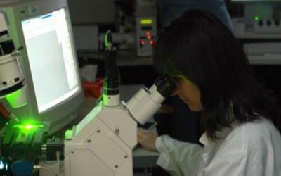 sclerosi_laboratorio_ricerca_fg-k00h-1280x960web