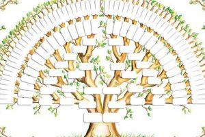 albero-genealogico
