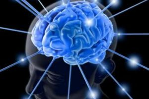 cervellodalweb-khqd-1280x960produzione