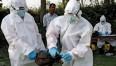 influenza-aviaria-aggiornamento-9-morti-30-casi-contagio