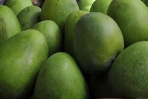 mango_xin-kFQE--1280x960@Web